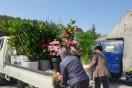 한빛본부,'사무실 꽃 생활화'로 지역 화훼농가 및 꽃가게 氣 살리기